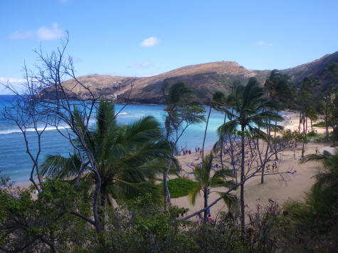 Underwater Park at Hanauma Bay, Ohio Hawaii